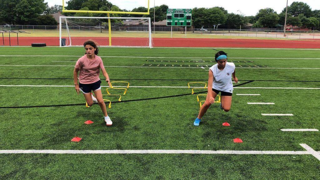 Sports training software